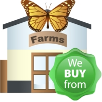 We Buy From Butterfly Farms