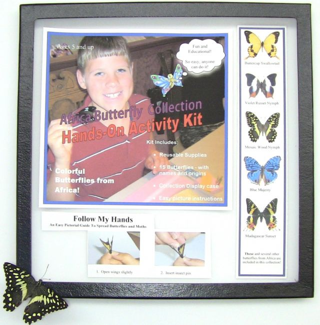 African Butterfly Collection ACTIVITY KIT